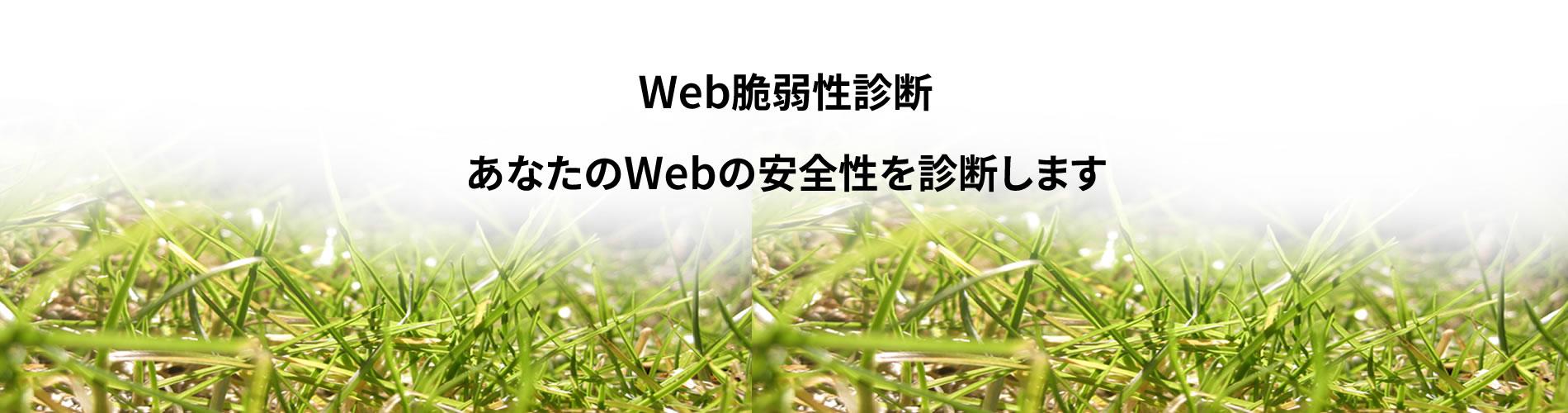 あなたのWebの安全性を診断します